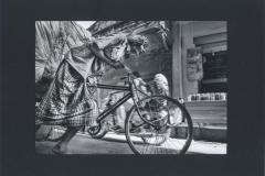 VILLA RICCARDO (Handcart bike 1)