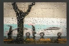 A_Batini roberto_Sotto la pioggia